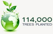 114,000 Trees Planted